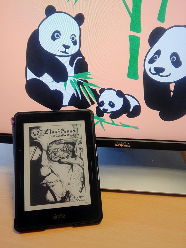 L'Indé Panda n°7